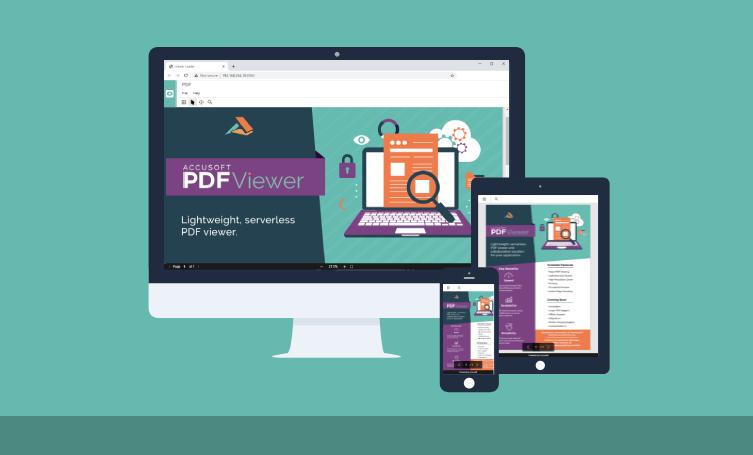 Accusoft PDF Viewer Illustration