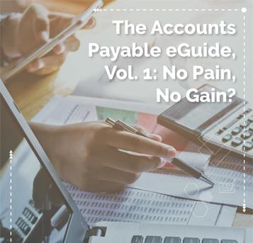 Accounts Payable eGuide 1